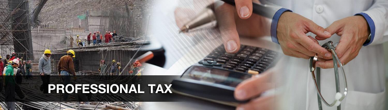 Professional Tax
